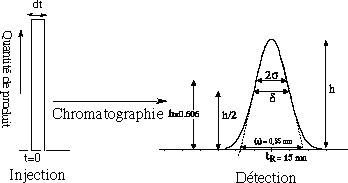 installation de colonne de chromatographie ionique